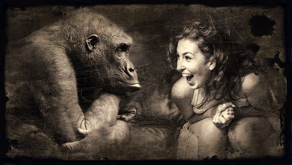 Sepia Laugh Woman Composing Old Photo Monkey